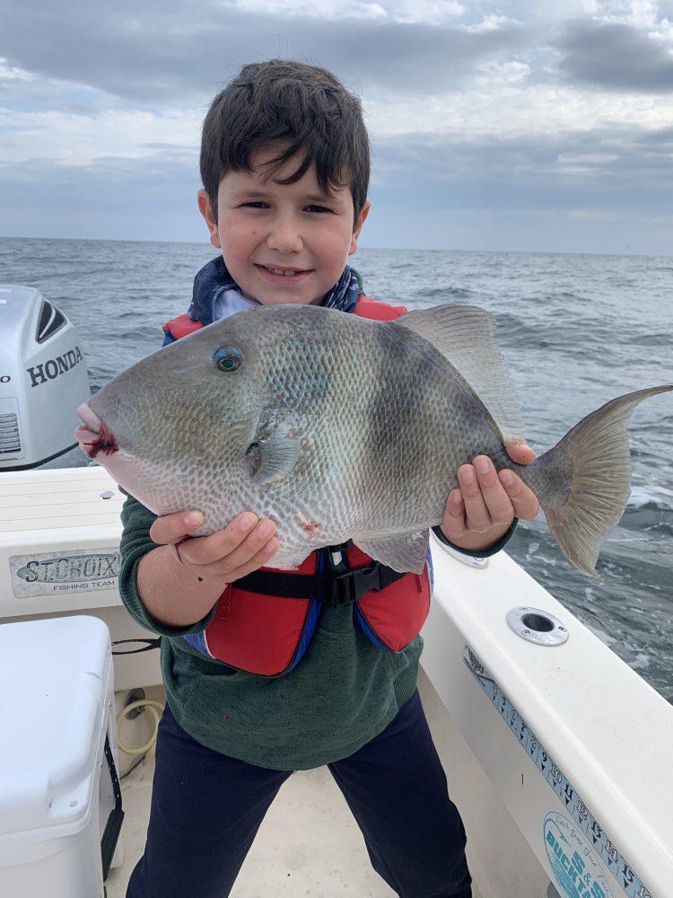 A jumbo triggerfish caught off the New Jersey deep shore wrecks.