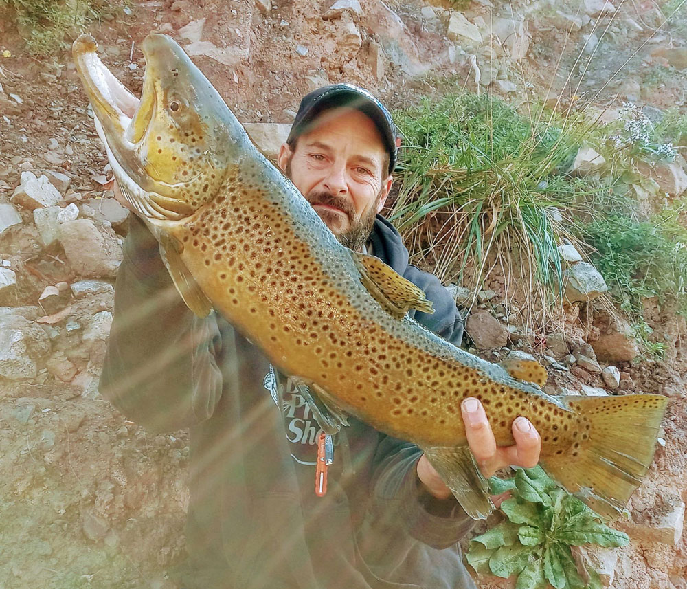 Mike Ziehm brown trout