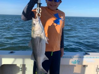 A young angler with a striped bass on Reel Reaction Sportfishing.