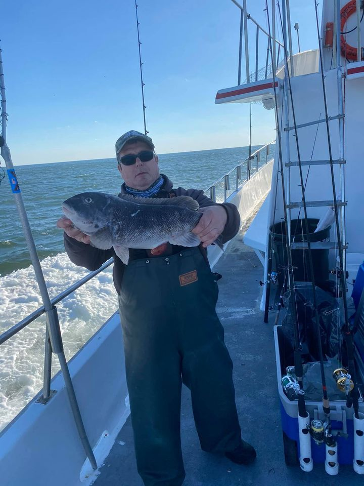 A tautog caught on Parker Pete's Sportfishing.