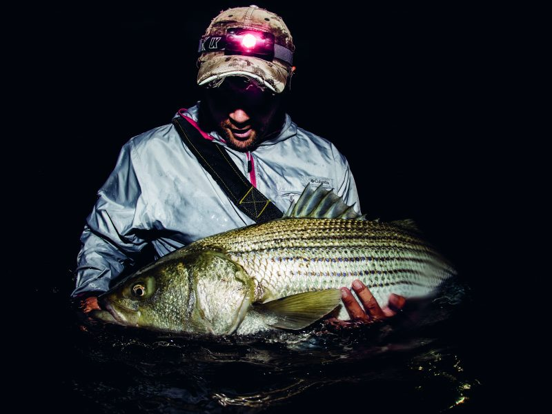 Steve Gallant posing with a large striper.