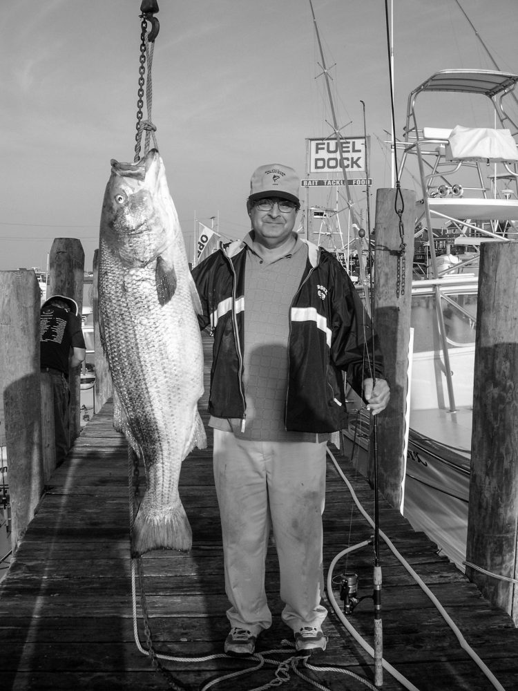 Peter Vican 77 pound striped bass