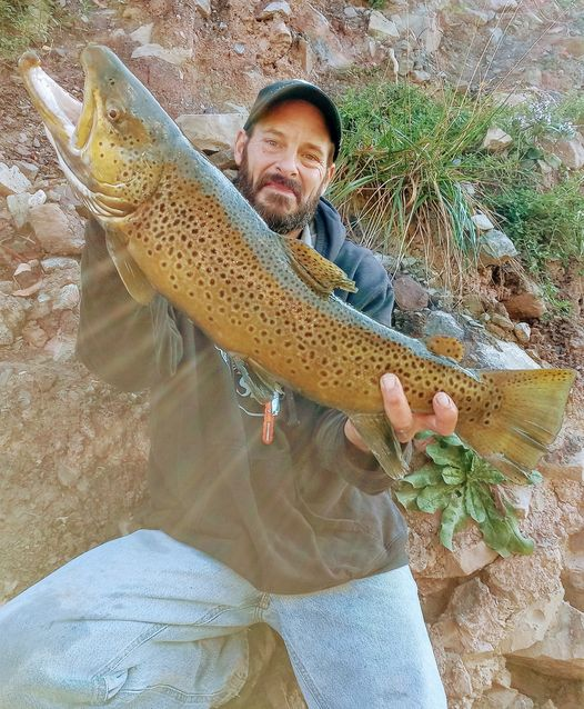 Mike Ziehm of Niagara Falls with a lower river brown trout in the gorge.