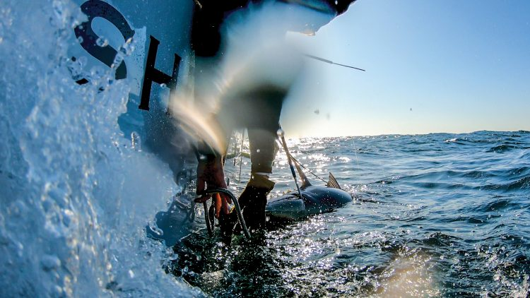 Lange sets a tail rope on a 70-inch bluefin.