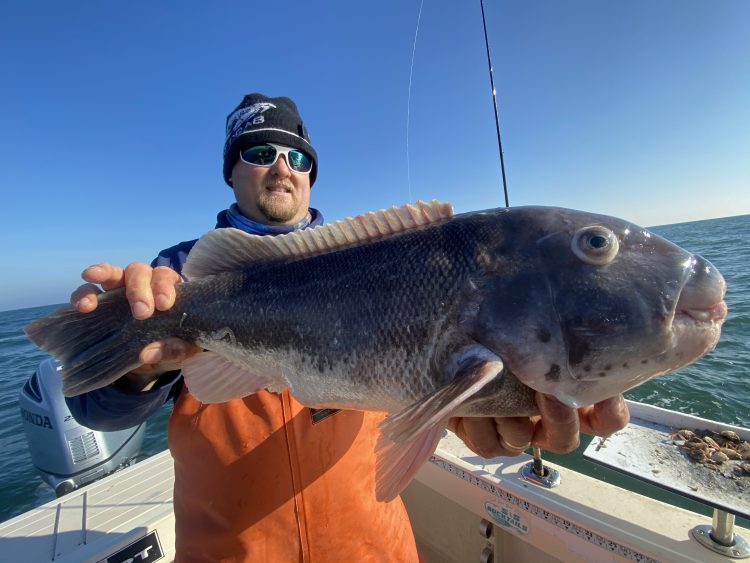 Tautog fishing has been productive according to several recent reports.