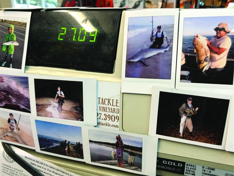 Angler photos adorn the shop, showing off local catches.