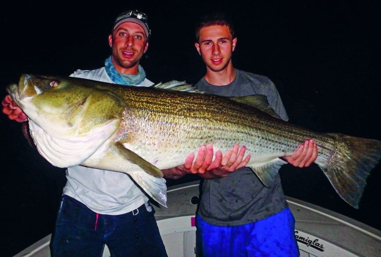 Learning your home waters inside and out will pay dividends with large stripers. This 55-pounder caught with Captain Mike Roy (left) was the culmination of years of experience learning the conditions and locations that produce big fish.