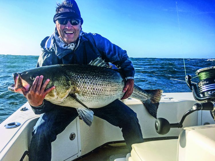 When sand eels are around, big stripers regularly eat small lures. This giant Block Island bass hit a 6-inch Slug-Go on a trip with Captain Chris Willi.