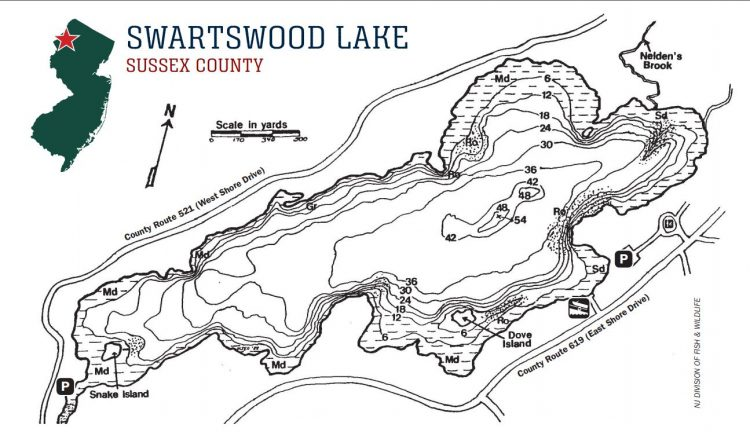 Try spoons, small rattle traps, and traditional lures like the Rapala Jigging Rap at Swartswood Lake.
