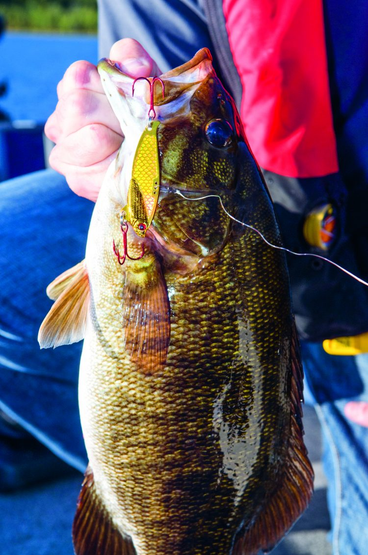 A properly worked blade bait can be downright deadly on cold-water bass.