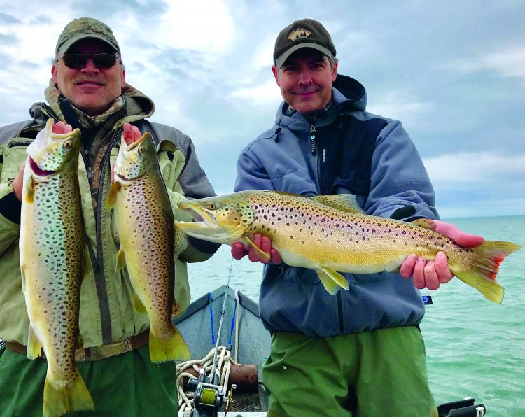 """The """"average"""" Lake Ontario brown trout weighs 4-to-6 pounds, and fish are large as 20-pounds are a possibility."""
