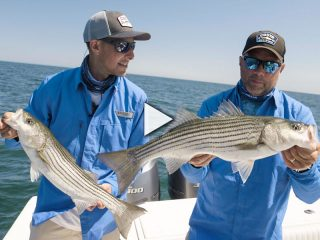 Chatham Rips Stripers
