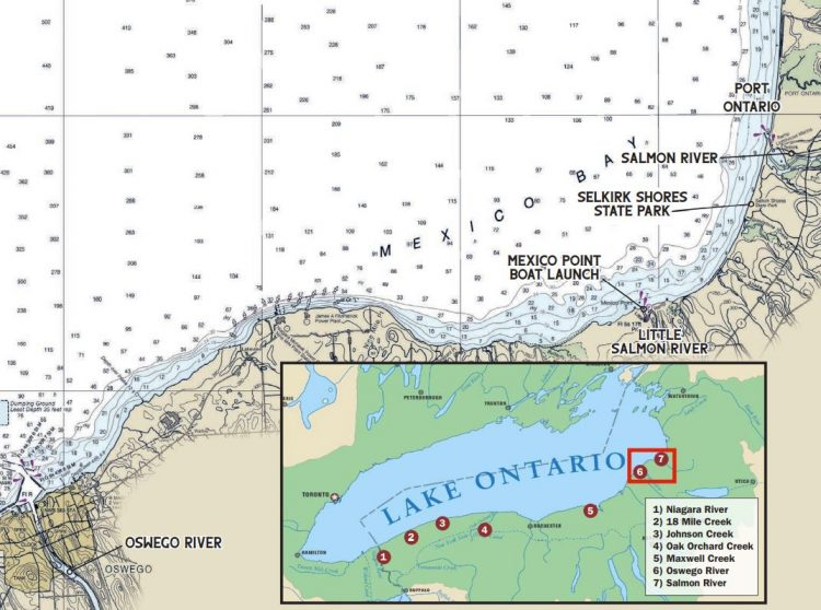 Lake Ontario and the surrounding tributaries offer anglers an opportunity to catch a 10-pound brown trout.