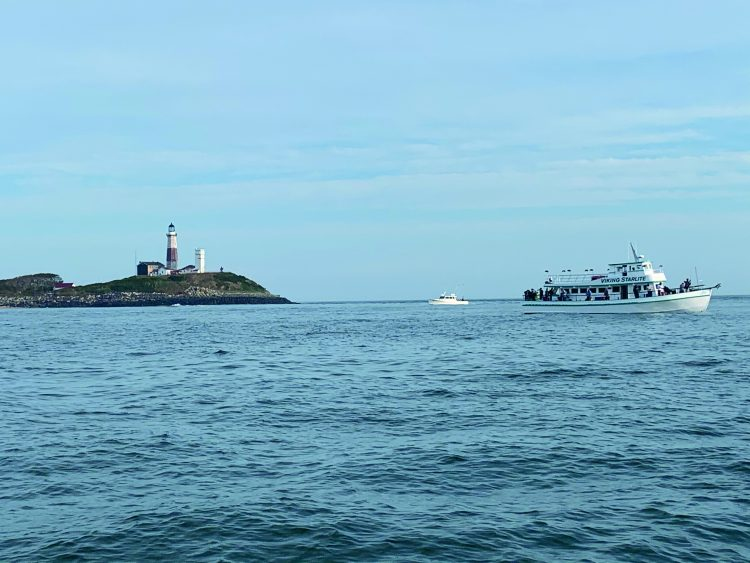 Montauk fluke fishing can happen close to the land, making it very accessible.