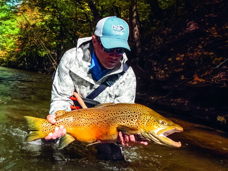 Follow these fishing tips to catch large brown trout at Lake Ontario and the surrounding tributaries.