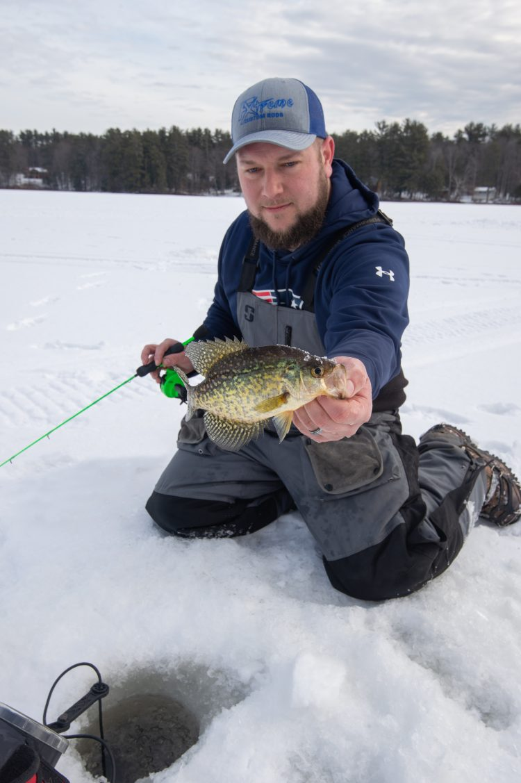 All panfish, bluegill, crappie, perch, and pumpkinseed can be caught using hair jigs.