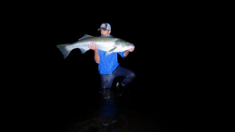 Night Striped Bass Fishing