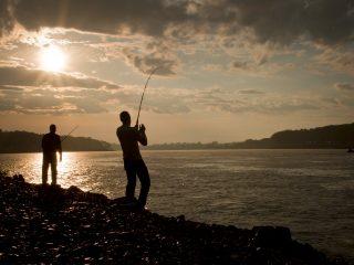 Man fishing from shore