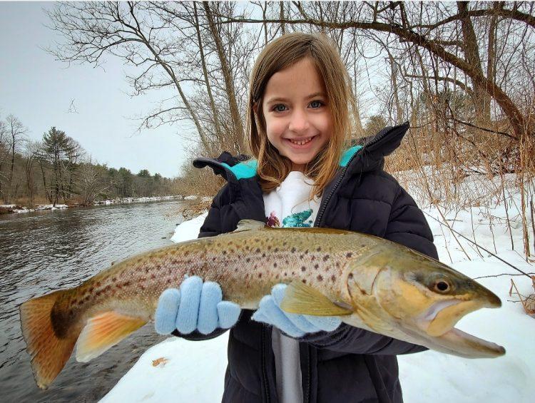 Farmington River Trout