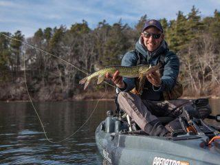 Pickerel fly fishing Cape Cod
