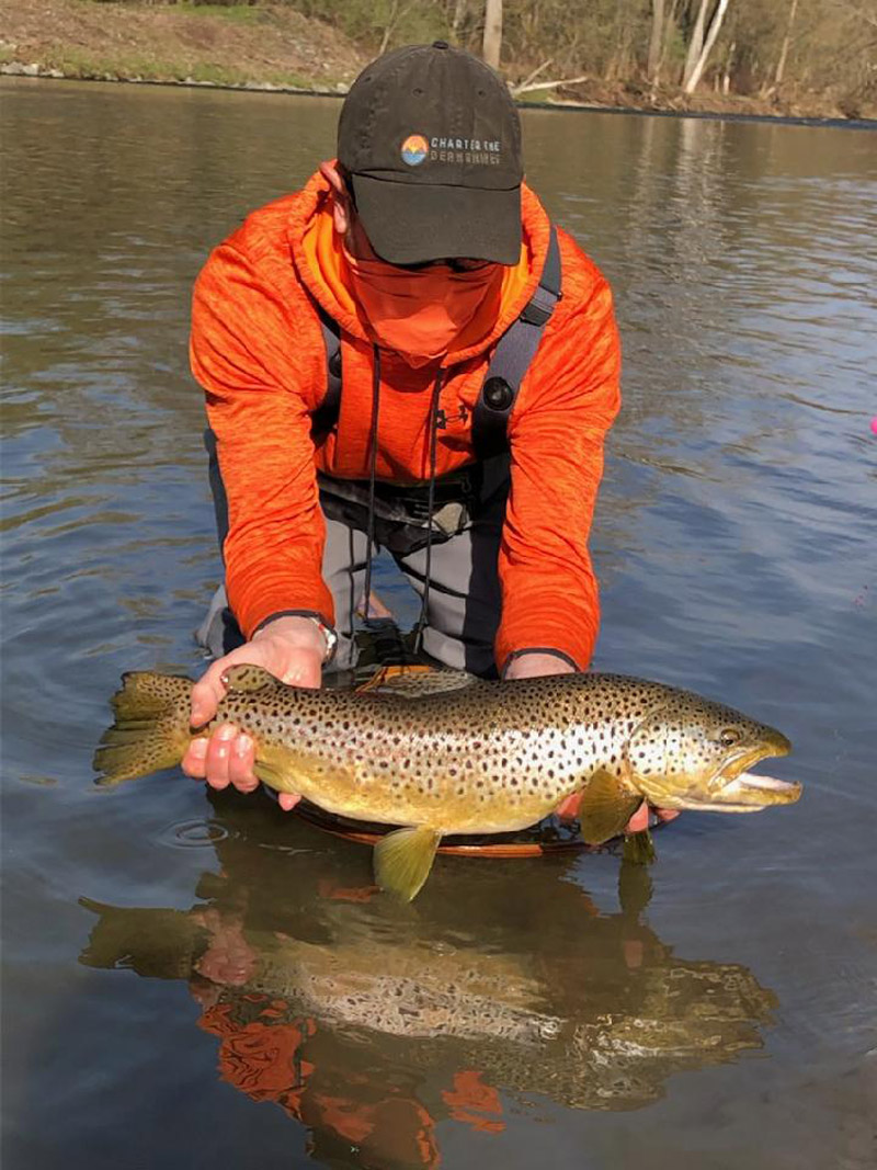Patrick Barone brown trout