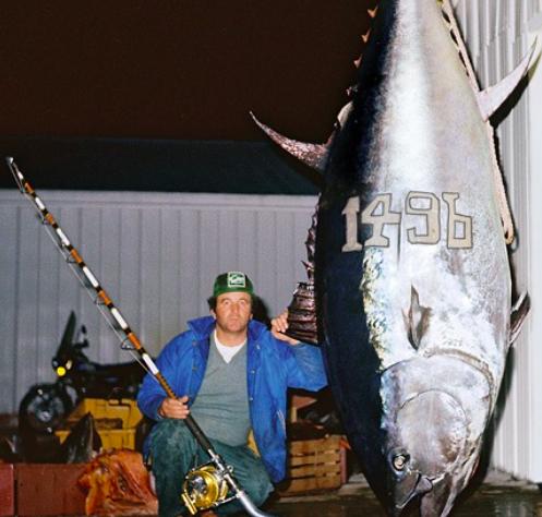 World Record bluefin tuna record