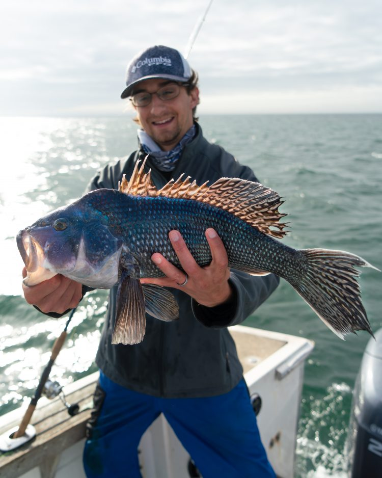 Black Sea Bass Boat Fishing