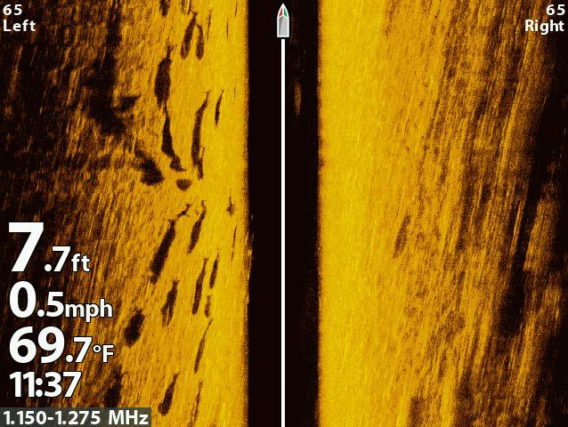 Side Scan Sonar