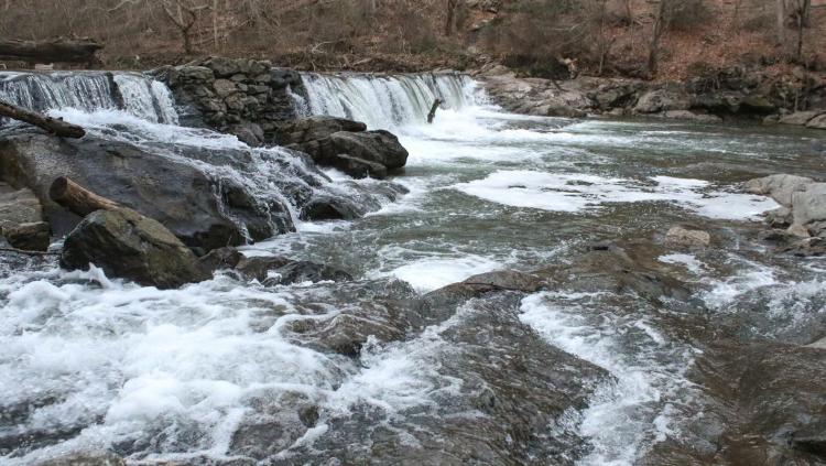Wissahickon Creek Waterfall