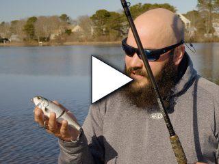 FishLab Bio-Shad Wake Bait