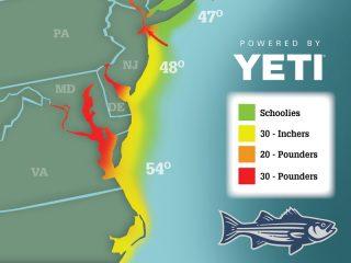 Striper Migration Map 04-23-2021
