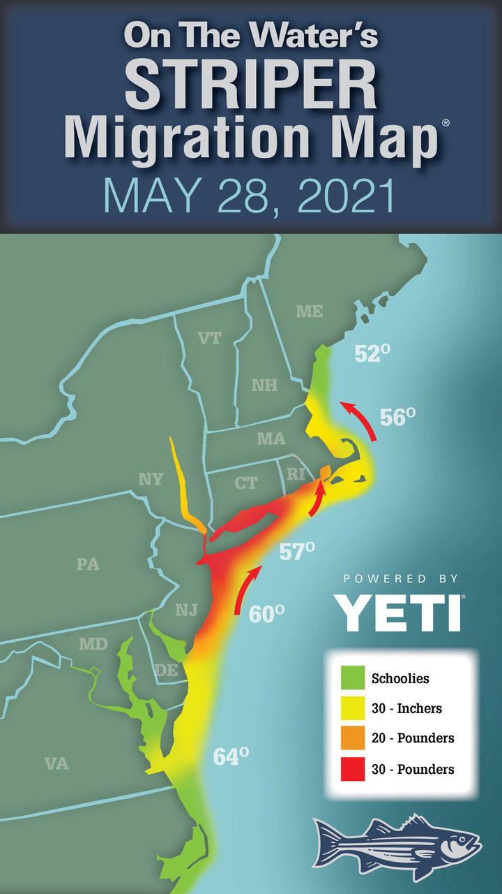 Striper Migration May 28, 2021