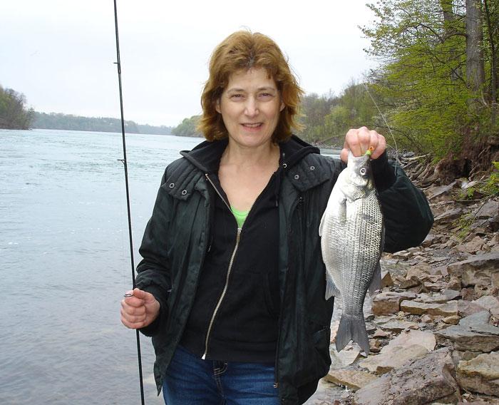 Nancy Colavecchia