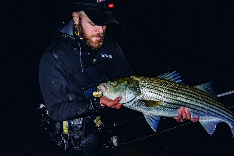 Striped Bass Surf Fishing