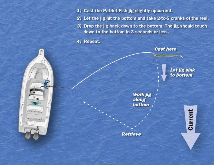JoeBaggs Patriot Fish Diagram