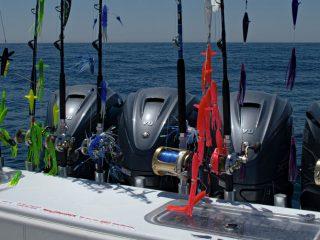 Yamaha XTO Offshore® V8
