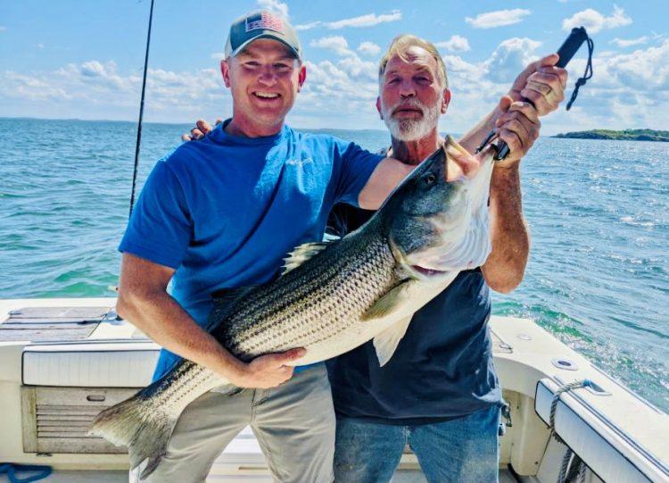 Boston Harbor Striped Bass