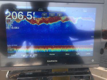 Tuna Block Island Sonar