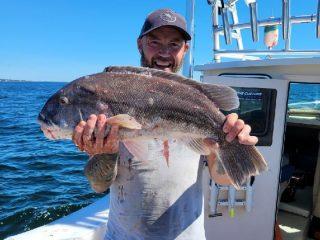 Big Tautog Ocean State Tackle